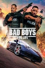 Bad Boys For Life 2020 Hindi Dual Audio 720p BluRay ESub 850MB Download