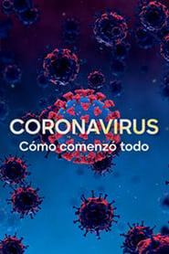 Corona Virus The Silent Killer (2020) Hindi Multi Audio 720p HDRip 900MB Download
